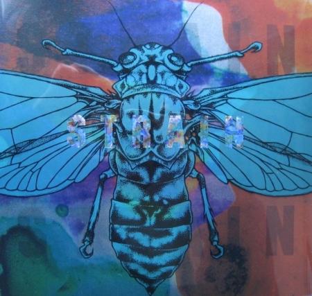 95-04-09 Strain Remorse 7'' cover